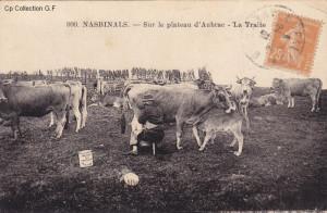 Nasbinals - Plateau d'Aubrac Traite